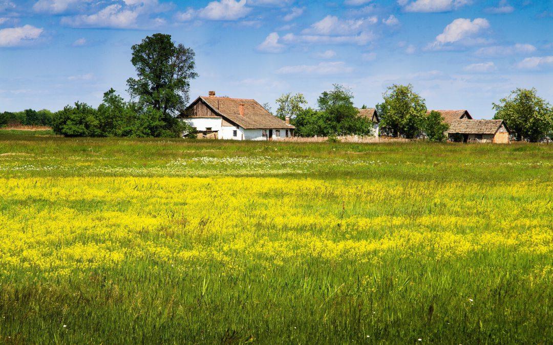 Pályázat tanyák részére – háztartási léptékű víz- és energiafejlesztés